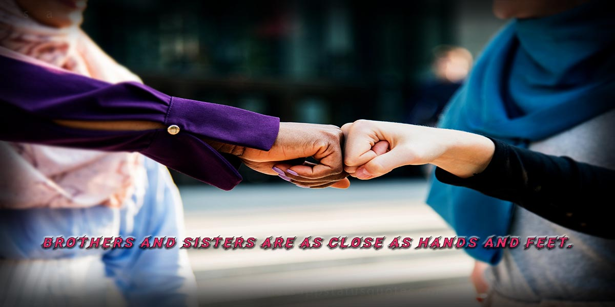 Top 10 Best Sister Status and Wishes: