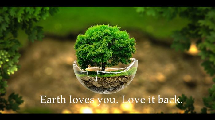 Photo of Best Earth Day Whatsapp Status Quotes