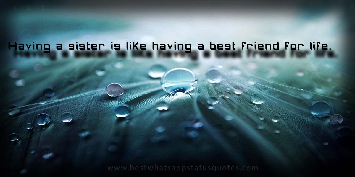 Lovely Sister Quotes and Wishes: