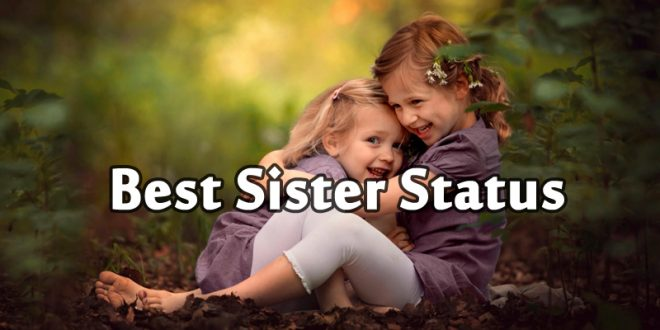 Sister Status for Whatsapp   Short Little Sister Quotes