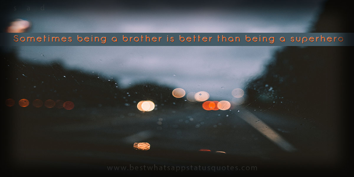 Amazing Status About Brothers: