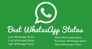 Best Whatsapp Status & Quotes