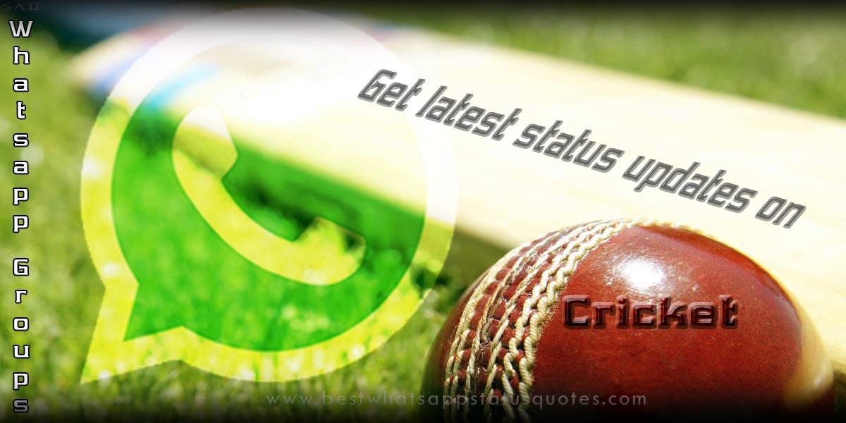 Cricket Whatsapp Groups