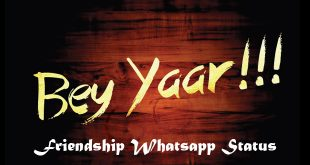 Friendship Whatsapp Status